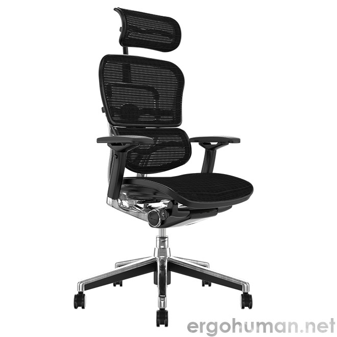 Ergohuman Elite Mesh Office Chair