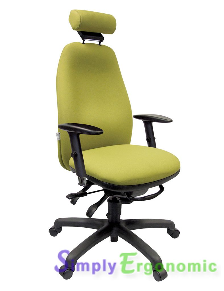 Adapt 610 Ergonomic Office Chair
