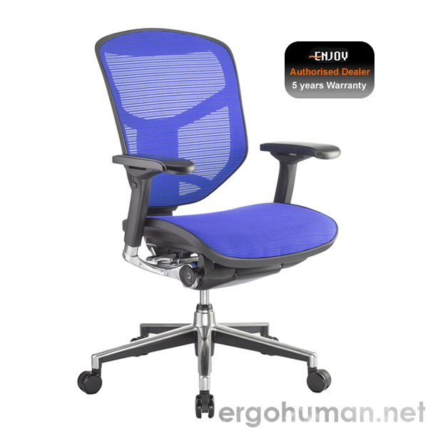 Enjoy Blue Mesh Office Chair