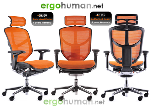 Ergohuman Enjoy Mesh Office Chairs