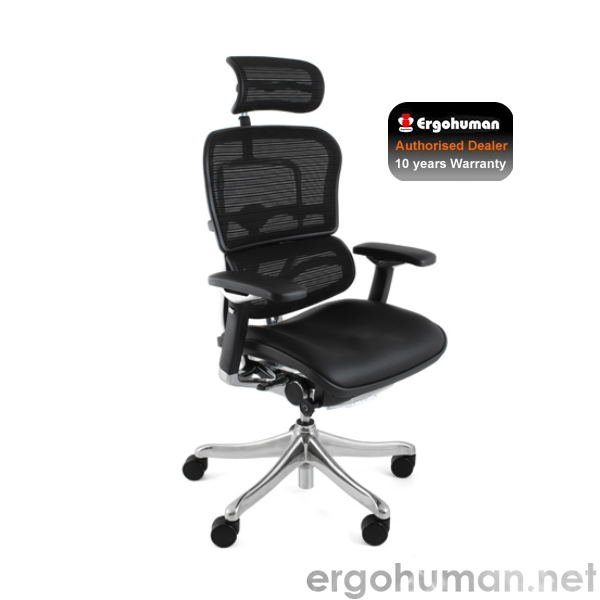 Ergohuman Plus Luxury Leather Seat, Mesh Back Office Chairs