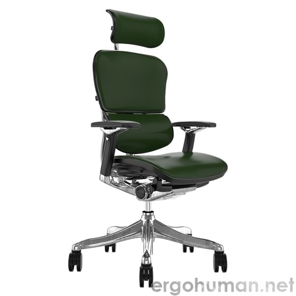 Ergohuman Plus Luxury Green Leather Office Chairs